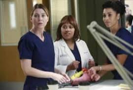 Greys Anatomy S13E02